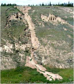 Figure 15.16 A slump (left) and an associated mudflow (centre) at the same location as Figure 15.15, near Lethbridge, Alberta. [SE 2005]