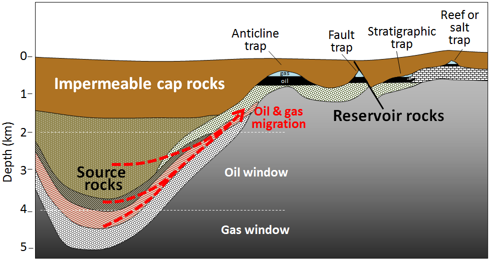 Figure 20.21 Migration of oil and gas from source rocks into traps in reservoir rocks [SE]