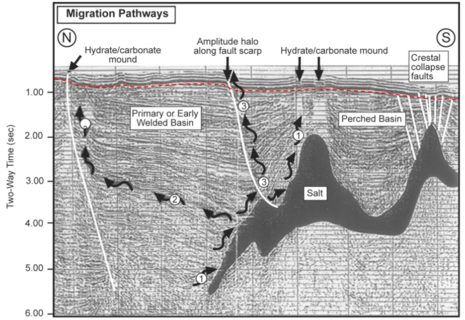 Figure 20.22 Seismic section through the East Breaks Field in the Gulf of Mexico. The dashed red line marks the approximate boundary between deformed rocks and younger undeformed rocks. The wiggly arrows are interpreted migration paths. The total thickness of this section is approximately 5 km. [SE after http://wiki.aapg.org/File:Sedimentary-basin-analysis_fig4-55.png]