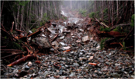 Figure 15.17 The lower part of debris flow within a steep stream channel near Buttle Lake, B.C., in November 2006. [SE]