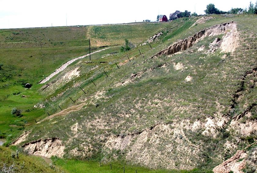 Figure 15.15 A slump along the banks of a small coulee near Lethbridge, Alberta. The main head-scarp is clearly visible at the top, and a second smaller one is visible about one-quarter of the way down. The toe of the slump is being eroded by the seasonal stream that created the coulee. [SE 2005]