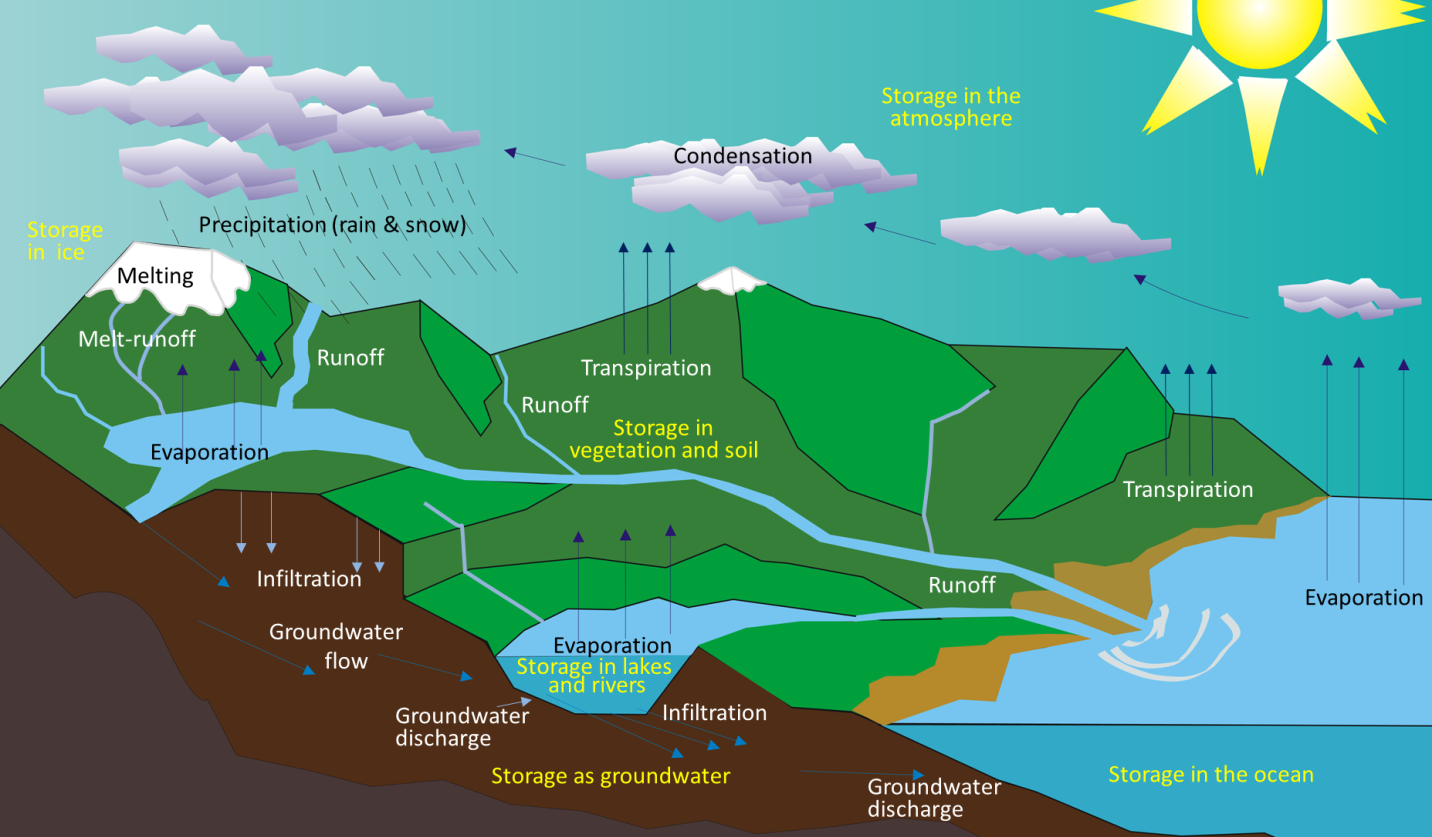 The various components of the water cycle. Black or white text indicates the movement or transfer of water from one reservoir to another. Yellow text indicates the storage of water. [SE after Ingwik CC-BY-SA http://bit.ly/HydCyc]