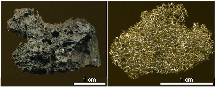 Mafic lapilli with vesicular textures. Left: Scoria from Mount Fuji, Japan. Scoria is the denser mafic counterpart to pumice. Right: Reticulite from Kīlauea Volcano. Reticulite is a delicate network of volcanic glass that forms when the walls separating gas bubbles pop. Sources: Left- James St. John (2014) CC BY 2.0 (scale added); Right- James St. John (2014) CC BY 4.0 (scale added)