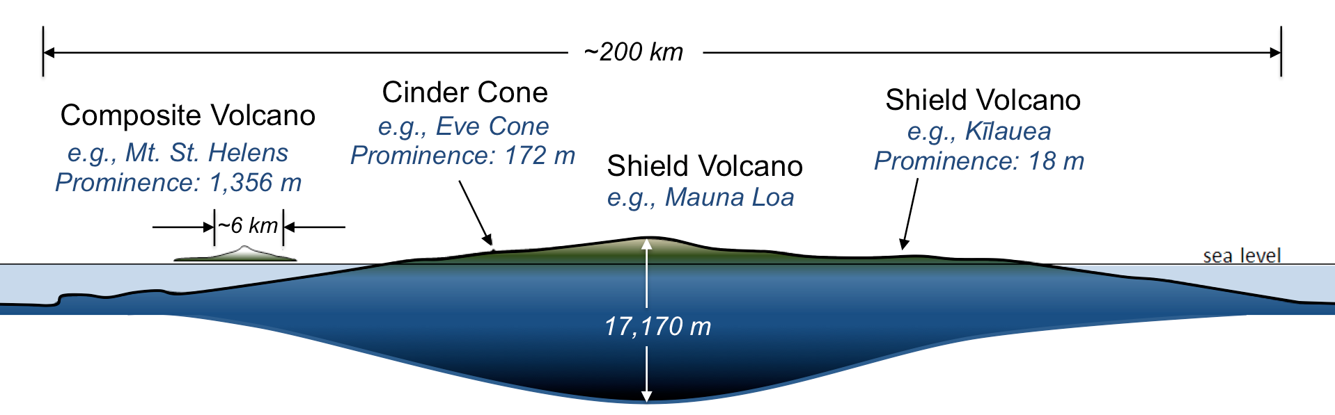 Comparison of volcano sizes and shapes. Broad, rounded shield volcanoes are the largest, followed by cone-shaped composite volcanoes. Straight-sided cinder cones are the smallest.