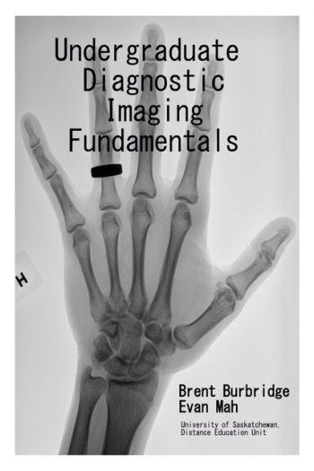 Cover image for Undergraduate Diagnostic Imaging Fundamentals