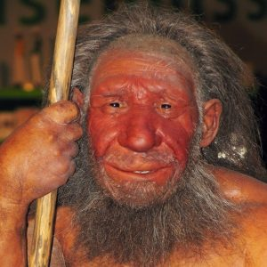 A model of a Neandertal.