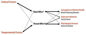 Diagram of the Affect Valuation Theory indicating that cultural factors have a higher influence on a person's ideal affect and temperamental factors have a higher influence on a person's actual affect.