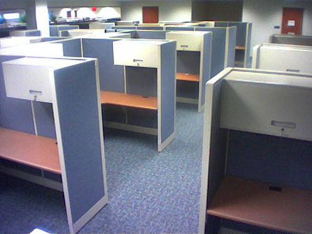 Rows of individual office cubicles.
