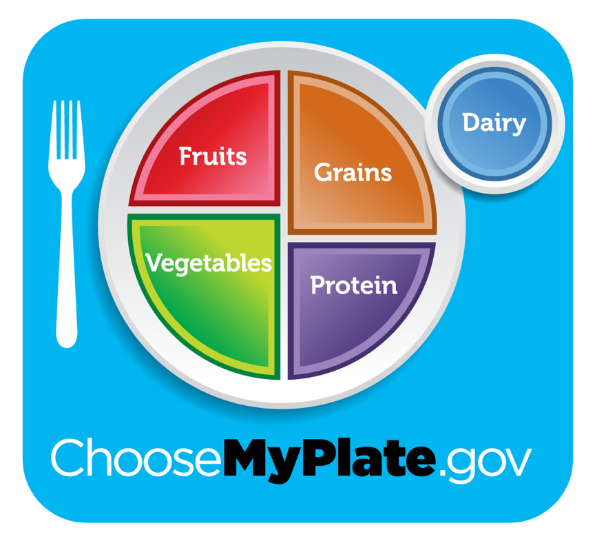 Image of the MyPlate.gov layout indicating the portion sizes for fruits, grains, vegetables, protein, and dairy on a plate.